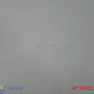 giay-dan-tuong-ay30021
