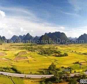 tranh-dan-tuong-thien-nhien-D0254 (Copy)