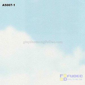 A5007-1