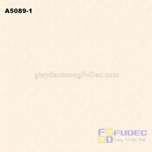 A5089-1 +ñ+¦