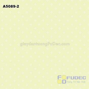 A5089-2 +ñ+¦